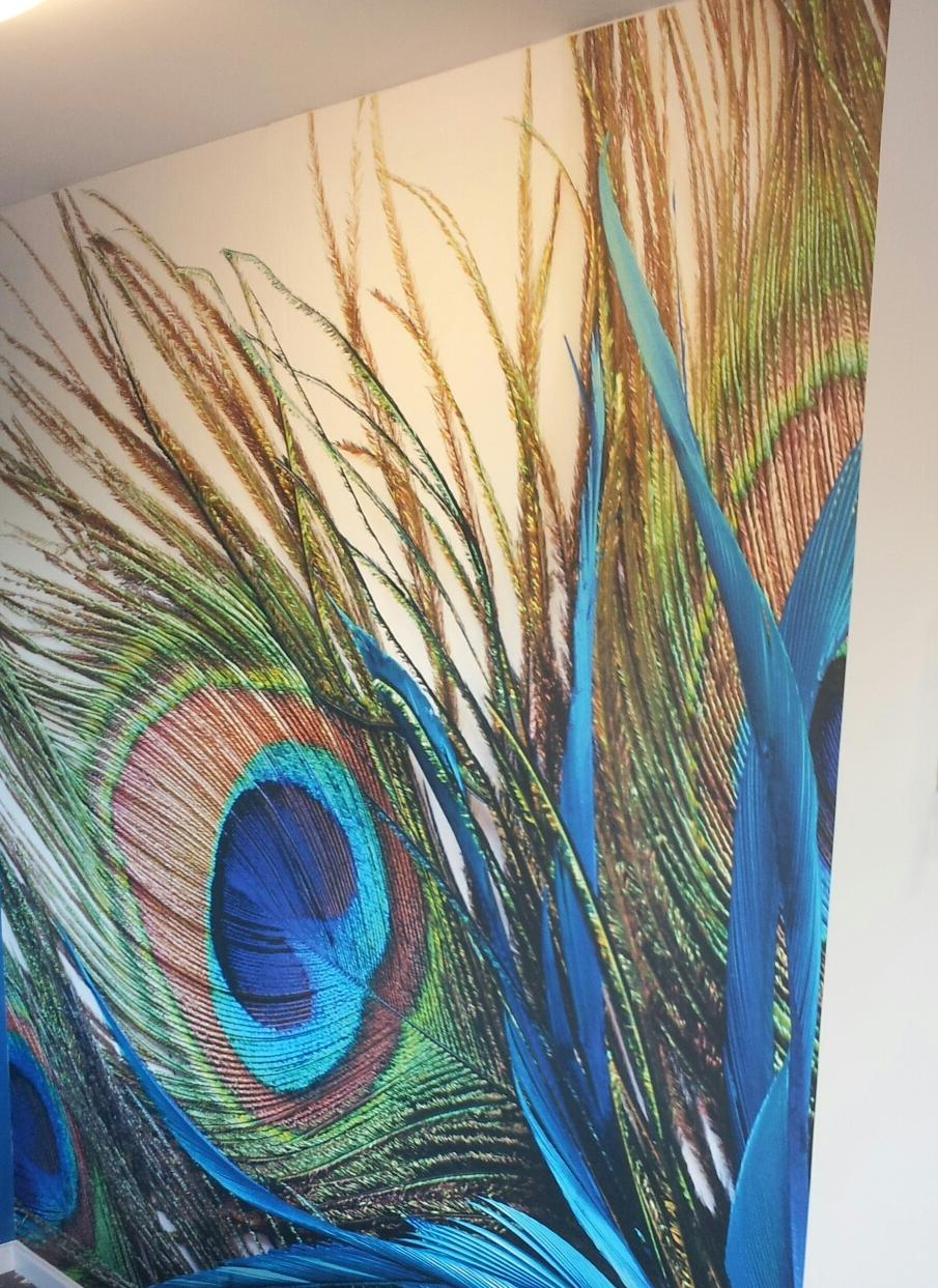 Click to enlarge image Wall vinyl with digital print Peacock feathers.jpg